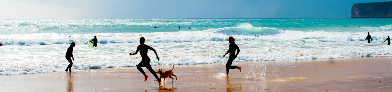 vacaciones con tu mascota en las playas para perros