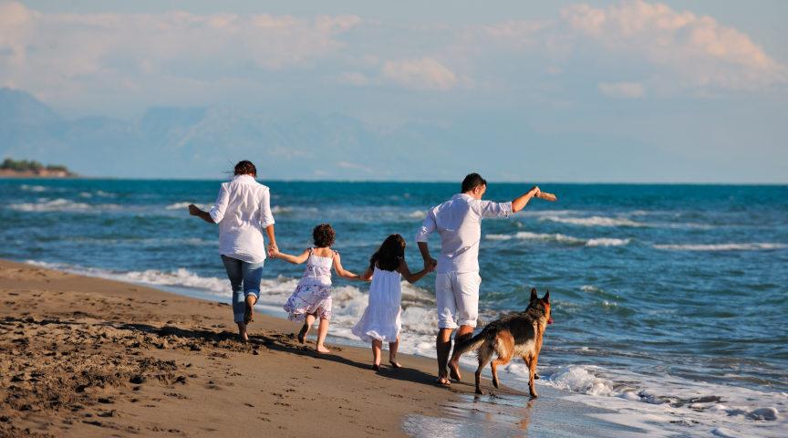 playas perfectas para visitar con tu mascota y tu familia